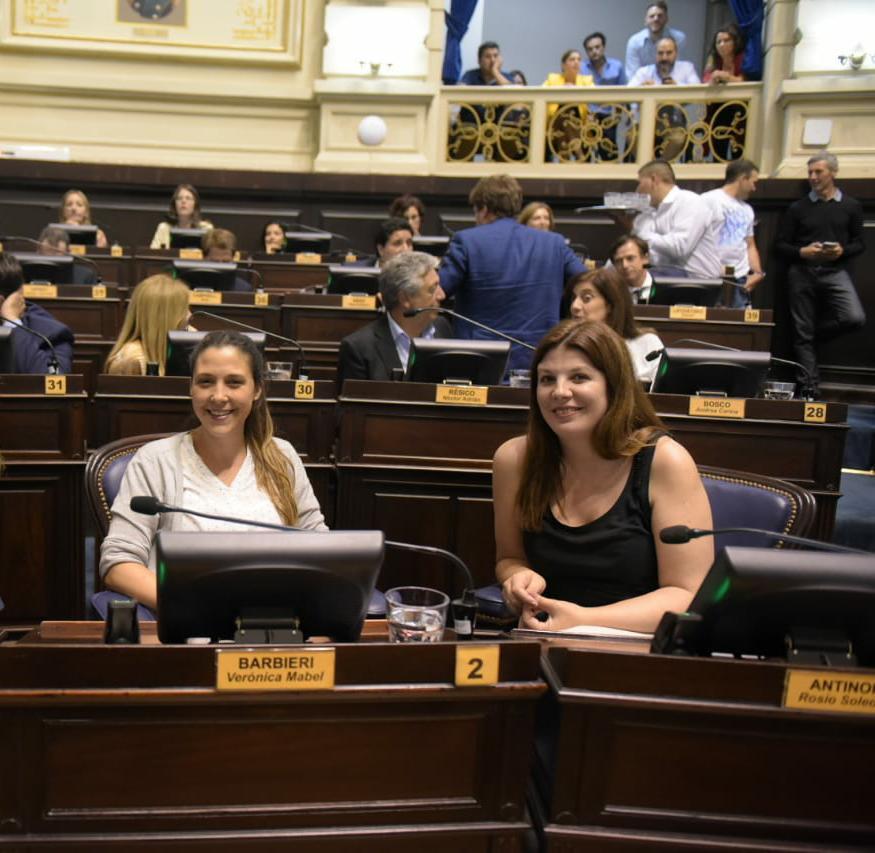 Iniciativa de Licencias Parentales en la Cámara de Diputados y Concejos Deliberantes provinciales