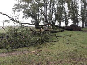 "Cola de tornado en Juan E Barra: ""Era una cortina que tapó todo"""