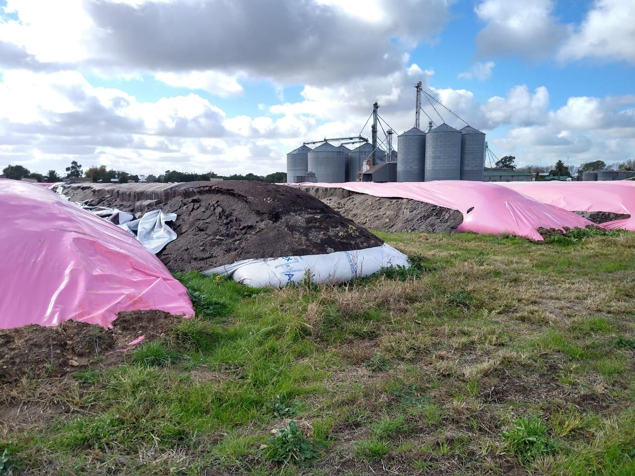 Este año ya se destruyeron 57 silobolsas que almacenaban granos por un total de hasta USD 60 millones