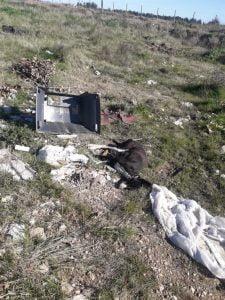 """Denuncian que """"tiran basura y animales muertos"""" en Ameghino 3000-4000"""