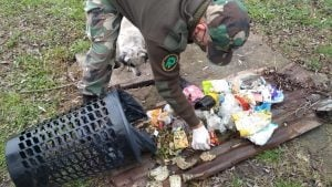 Esclarecido el caso de silobolsa vandalizado en Gonzáles Chaves