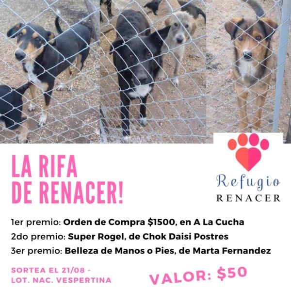 "La rifa del refugio canino ""El Renacer"""