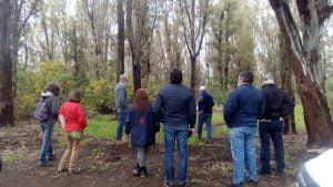 Claromecó: proyectan comenzar a plantar un bosque productivo de leña