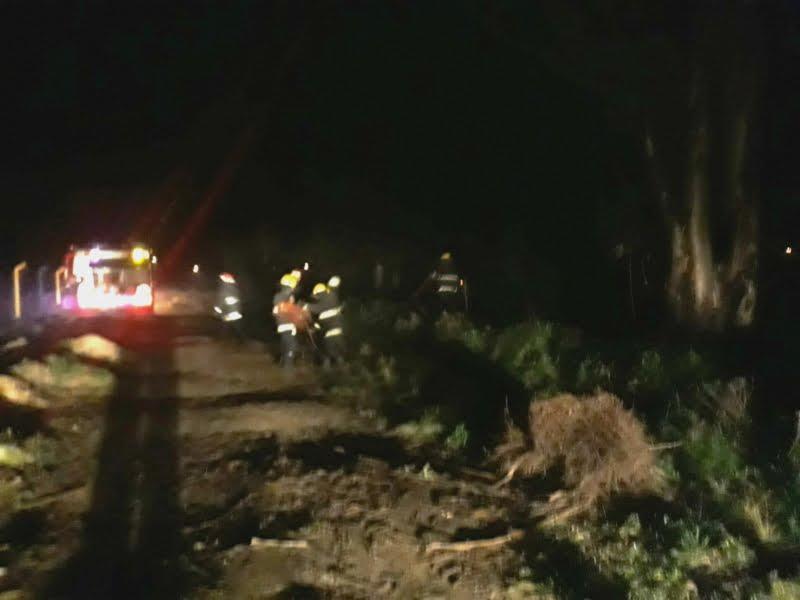 Bomberos combatieron incendio a la vera del arroyo del Medio