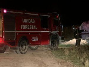 Otra jornada de actividad para los Bomberos: incendio en un campo y en Central