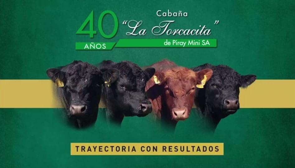 Este viernes se realizará el remate online de La Torcacita (video)