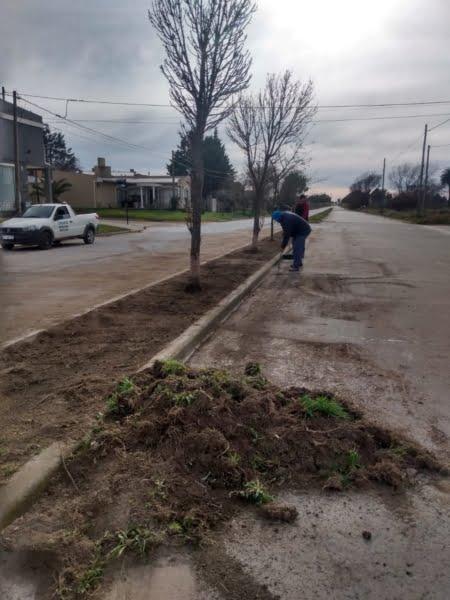 """""""Barrios limpios"""" trabajó en la Avenida Belgrano del 1000 al 1600"""