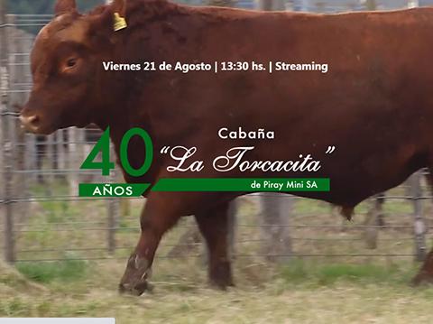 """""""La preoferta funcionó de 10"""", resaltó uno de los propietarios de La Torcacita"""