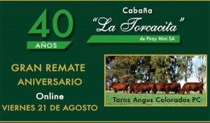 El remate de La Torcacita será por streaming (video)