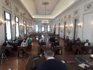 El Concejo aprobó los reclamos por mayor seguridad y poda del arbolado urbano