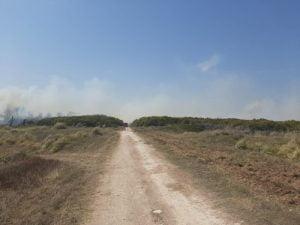 """Lamberti: """"el viento aleja el fuego de la zona urbana y lo dirige hacia un sector de contención"""" (video)"""