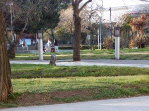 La gente disfrutó de la tarde en los espacios públicos