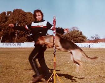 """Adiestramiento de perros: """"Hay razas que uno no recomienda tenerlas como mascotas"""""""