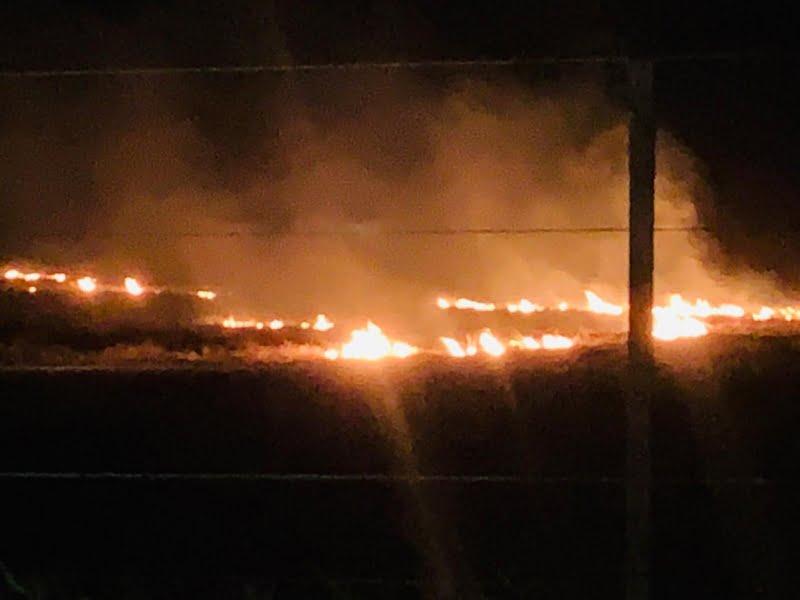 Bomberos concurrieron a un incendio declarado en un campo (video)