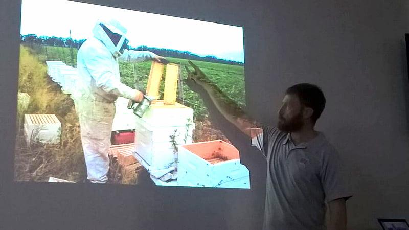 Apicultores aseguran que el mercado cambiario beneficia a la producción apícola