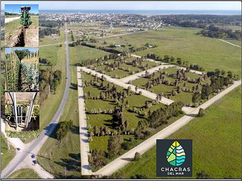 Chacras del Mar, un lugar exclusivo para Claromecó. Otro emprendimiento de Pardo Inmobiliaria