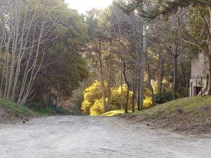 Agradable jornada en Claromecó