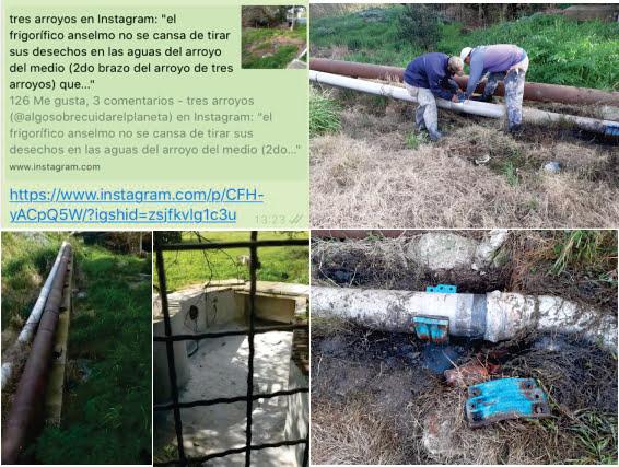 Empleados del Frigorífico Anselmo desmienten que se arrojen líquidos sucios crudos al arroyo (video)