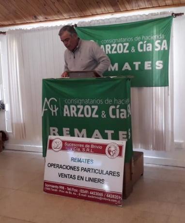 4° Remate por streaming de Arzoz y Cía.: Se pagaron hasta 200 mil pesos los toros y 93 mil los vientres