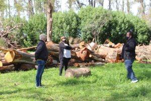 Retiran del Parque Cabañas leña que será para abastecer a familias que lo requieran