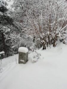 La peor nevada de los últimos 60 años en España (Videos)