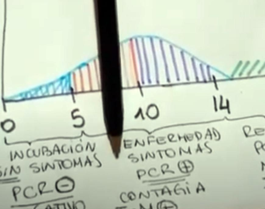 Interesante video sobre el proceso evolutivo del coronavirus