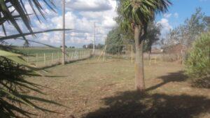 San Cayetano: El Consejo Escolar continúa con el corte de pasto en las instituciones rurales
