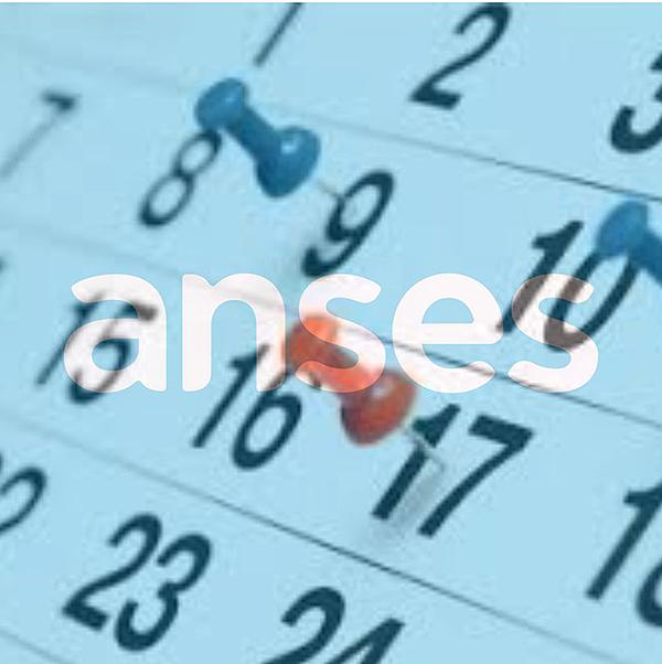ANSES: calendarios de pago de hoy jueves 10 de junio