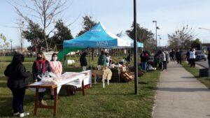 La feria de Mercados Bonaerenses estará hoy en Ranchos y Villa Italia