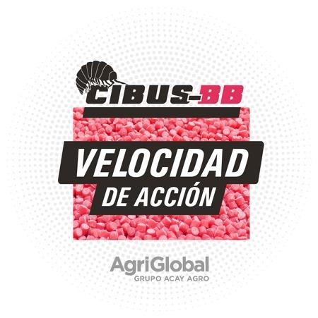 Con productos biológicos y una aplicación gratuita, AgriGlobal combate el bicho bolita